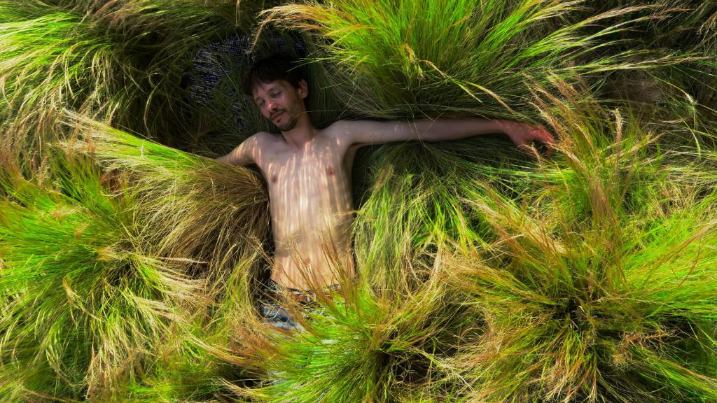 """""""Herbes folles"""" par Isocel Rivera (Wipplay.com)"""
